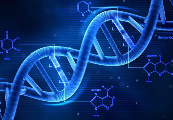 Grado en Biotecnología