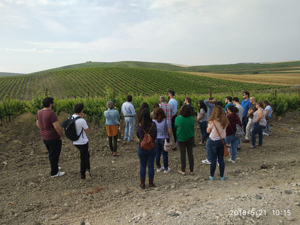 Visita del Máster en Agroalimentación a las Bodegas Barbadillo y Cortijo de Jara
