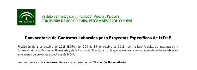 Convocatoria de Contratos Laborales para Proyectos Específicos de I+D+F