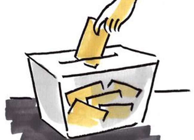 IMG Elecciones Noviembre 2020